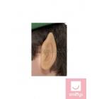 Elfa ausis