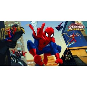 http://www.lemma.lv/7502-thickbox/sienas-plakts-spiderman.jpg